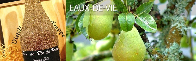 Eaux-de-vie de fruits