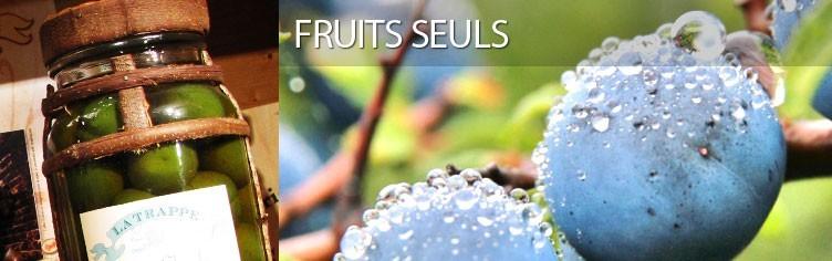 Fruits seuls à l'ancienne